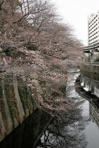 edogawabashi-290小小.jpg