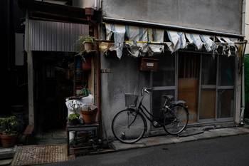 edogawabashi-89小小.jpg