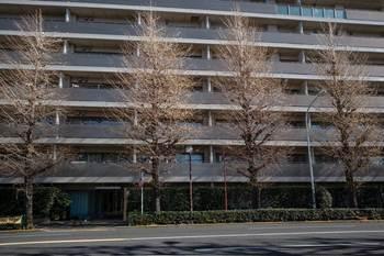 mejirodai-106小小.jpg
