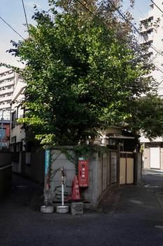 nakameguro-13小小.jpg